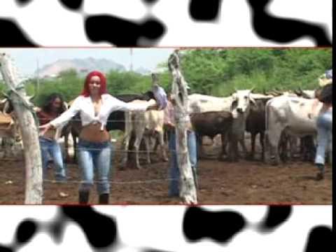 pascual amarrame la vaca