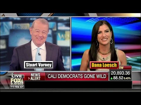 Dana Loesch - Democrats are in Complete Dissarray