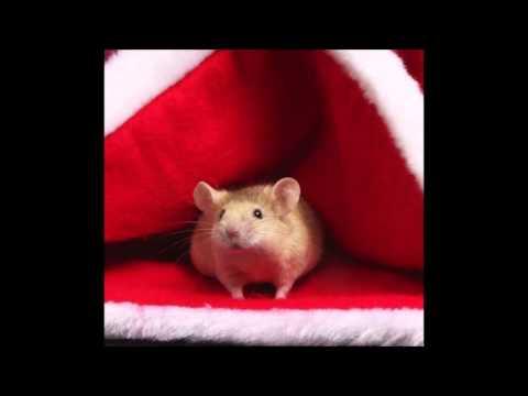 The Christmas Mouse - WXRT - Lin Brehmer
