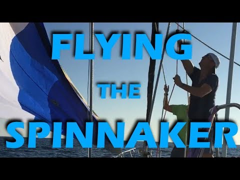 Flying The Spinnaker in Baja! - Sailing Doodles Episode 63
