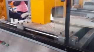 Poland Customer--pvc Wood Plastic Cladding Wall Making Machine