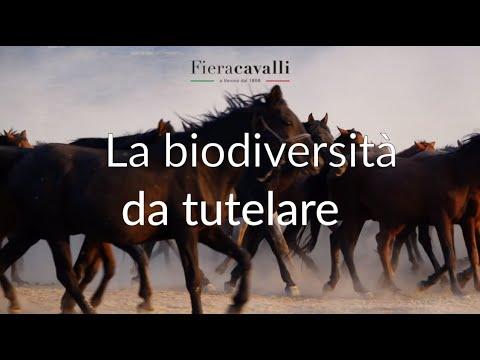 """Il viaggio che cambia - """"La biodiversità da tutelare"""""""