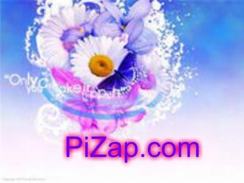 Онлайн редактор Pizap. Отличный помощник для работы!