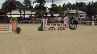 Samanta Ribary on Nolan 2016 (Reserve-Winner 1.15m Stake: Equestrian Jumping)