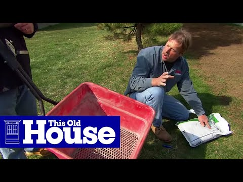 How To Revive A Brown Lawn Youtube