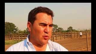 Futuro del campo: Integración Agrícola-Ganadera