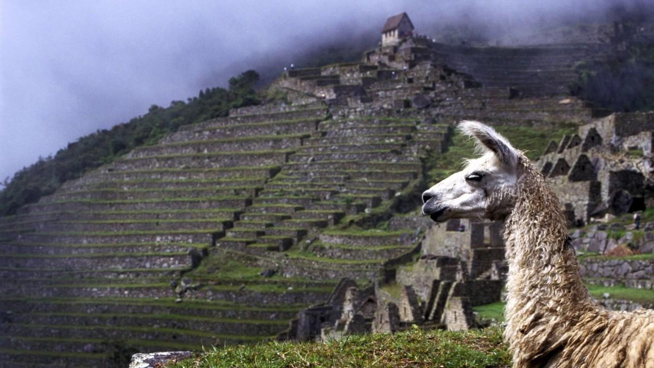 Inca Music From Ecuador