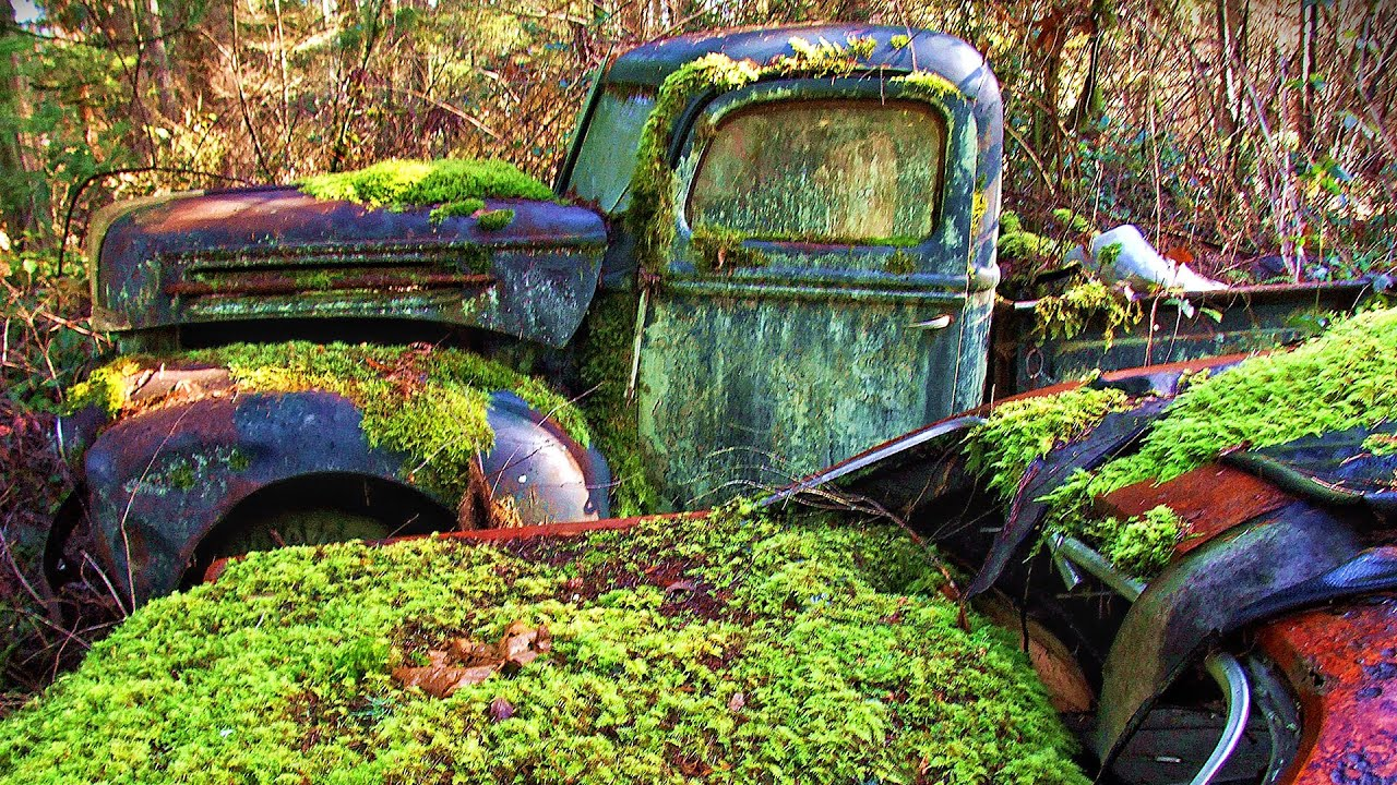 Abandoned car dump. Car Cemetery classic cars. Abandoned cars in ...