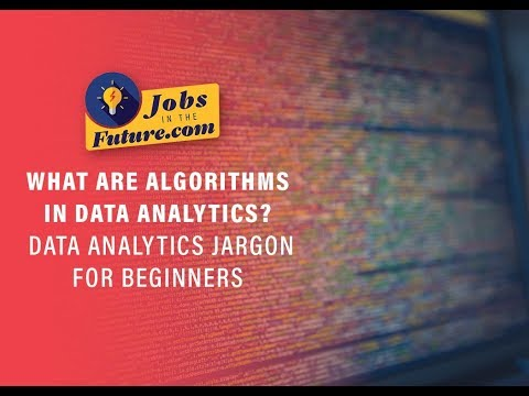 What Are Algorithms in Data Analytics - Data Science Jargon for Beginners