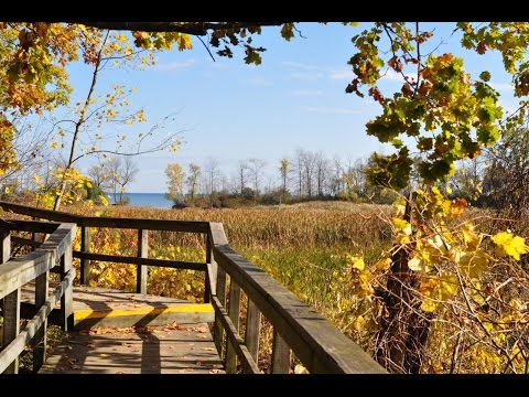 Top Tourist Attractions in Mississauga (Ontario) - Travel Gu
