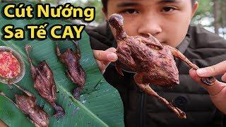 Gấu Vlogs - Chim Cút Nướng Sa Tế Cay ( Roasted quail )
