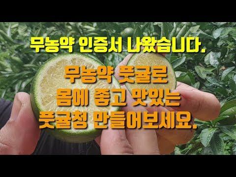 무농약인증 풋귤(청귤) 판매합니다 맛있고 건강한 무농약청귤청으로 시원한 여름 보내세요  무농약감귤 서귀포감귤 숨비재