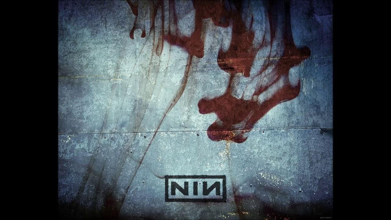 Nine Inch Nails - Piggy (Milos Vasic, cover) - YouTube