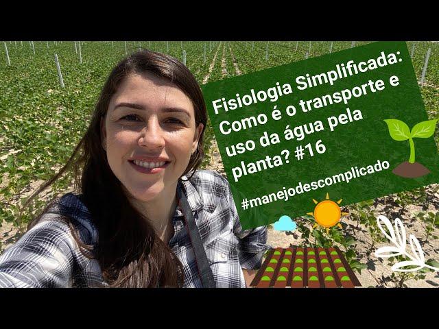 Fisiologia Simplificada:  Como é o transporte e uso da água pela planta? #16 #manejodescomplicado