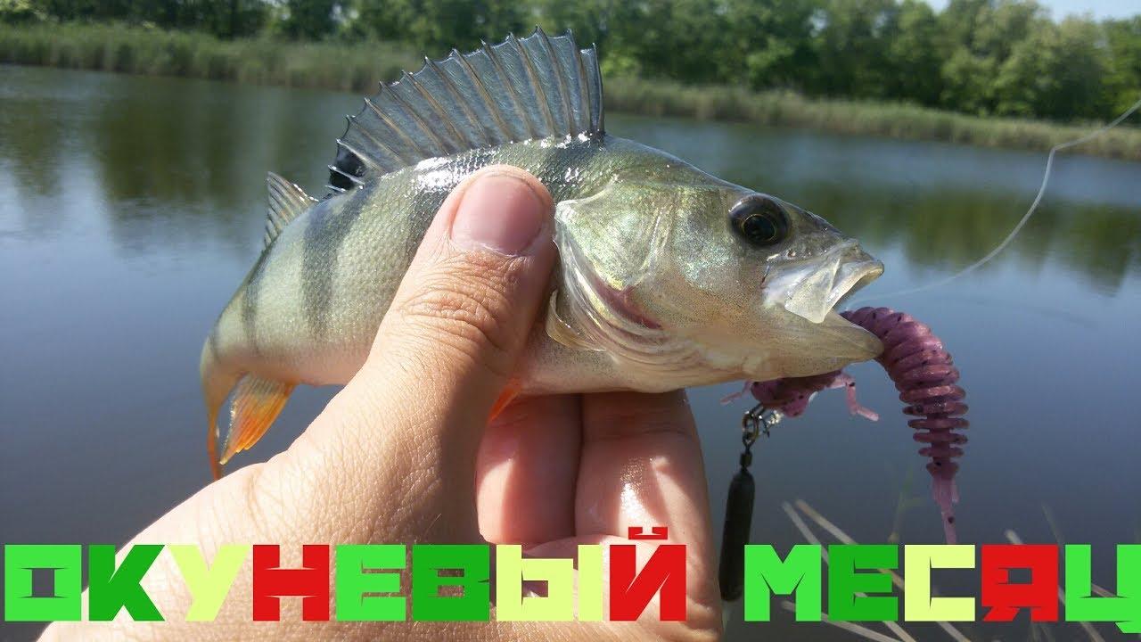 долгая рыбалка
