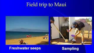 Characterization of Human Fecal Bacteria Load and Selected Human Pathogens on Maui