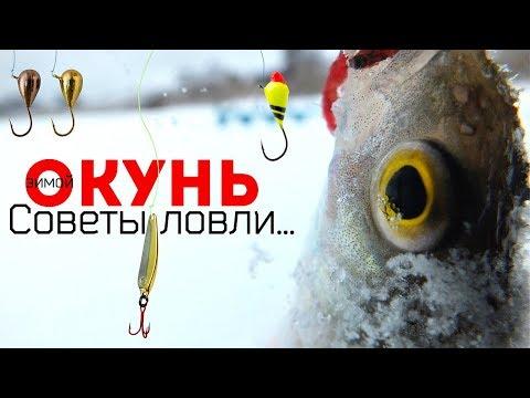 Новые секреты и советы по ловле окуня зимой в декабре! Как и на что ловить окуня в декабре?
