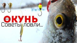 Новые секреты и советы по ловле окуня зимой в декабре Как и на что ловить окуня в декабре