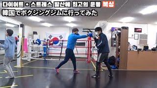 부산 복싱장에서 권투연습 / 韓国でボクシングジムに行って…