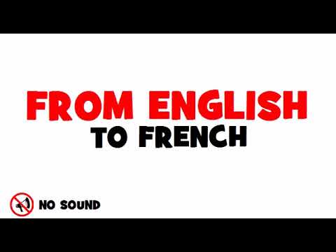 FROM ENGLISH TO FRENCH = Exclusive economic zones