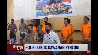 iNews NTT - Polres Manggari Barat Bekuk Kawanan Pencuri Lintas Provinsi