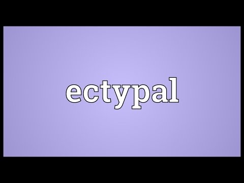 Header of ectypal