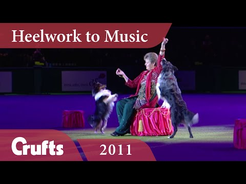 Heelwork To Music - Mary Ray's 2011 Performance | Crufts 2011