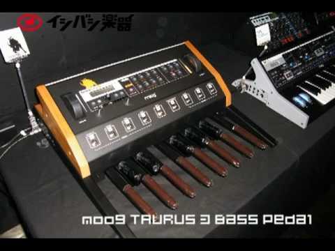 moog taurus 3 bass pedal 1 youtube. Black Bedroom Furniture Sets. Home Design Ideas