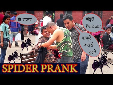 Spider Prank On Public- Epic Funny Reaction / Nepalese Dreamer / ND Squad