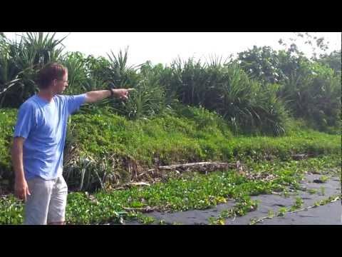 Bali Road Trip Part 9