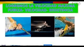 13 -  Técnica Estilo Libre Bialetas, similitudes y diferencias Natación Clásica. Juan Carlos Toledo