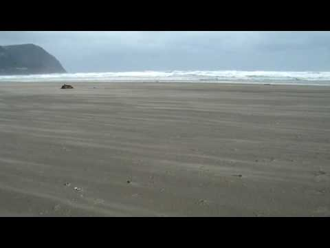 Oregon Beach:  Sand Transport on a Windy Day