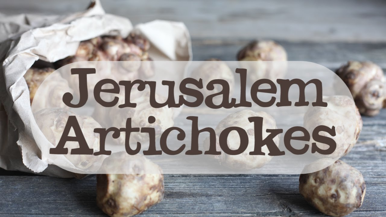 Jerusalem Artichoke Recipes Recipe Abel Cole