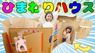 ひまわりハウス完成!!まーちゃんおーちゃん理想のダンボールハウスを作ろう!himawari-CH thumbnail