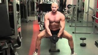 Как накачать спину - №267. Упражнения для мышц спины