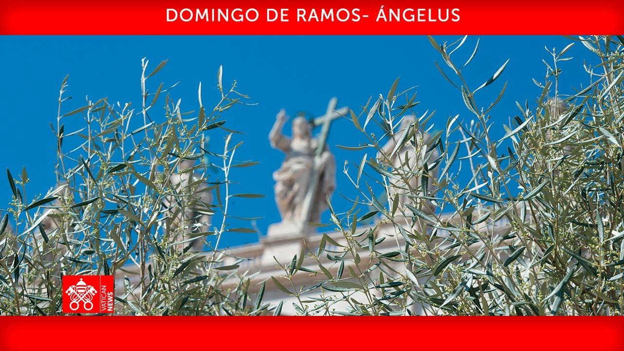 28 de marzo 2021, Celebración del Domingo de Ramos y Oración del Ángelus - Homilía, Papa Francisco