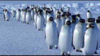 Vangelis - Theme from Antarctica