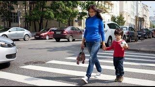 Безопасность пешеходов. Программа «Вместе за безопасность»