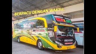Download Video KECEPATAN DI ATAS RATA RATA, 3 Bus Masih Bisa Salip..SUOOSS BANGET!! MP3 3GP MP4