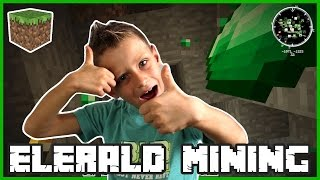 28 Diamonds and 12 Emeralds / Minecraft