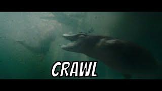 Ce Seriale Filme Noi Online - CRAWL Trailer 2019, filme noi 2019 ROMANIA