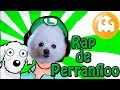 Rap De Fernanfloo Cover Gabe The Dog mp3