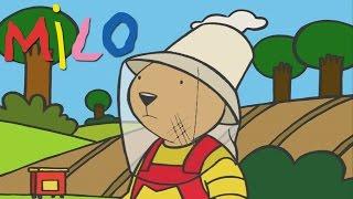 Milo, la valiente! | Dibujos animados para los niños