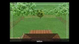 Nathan's Backyard Garden Design - Plan
