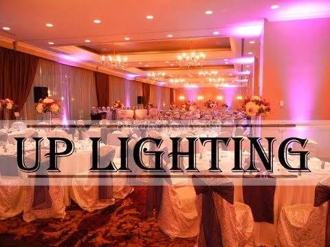 Wedding Decoration Party Lights Rentals Uplighting Ambience Light