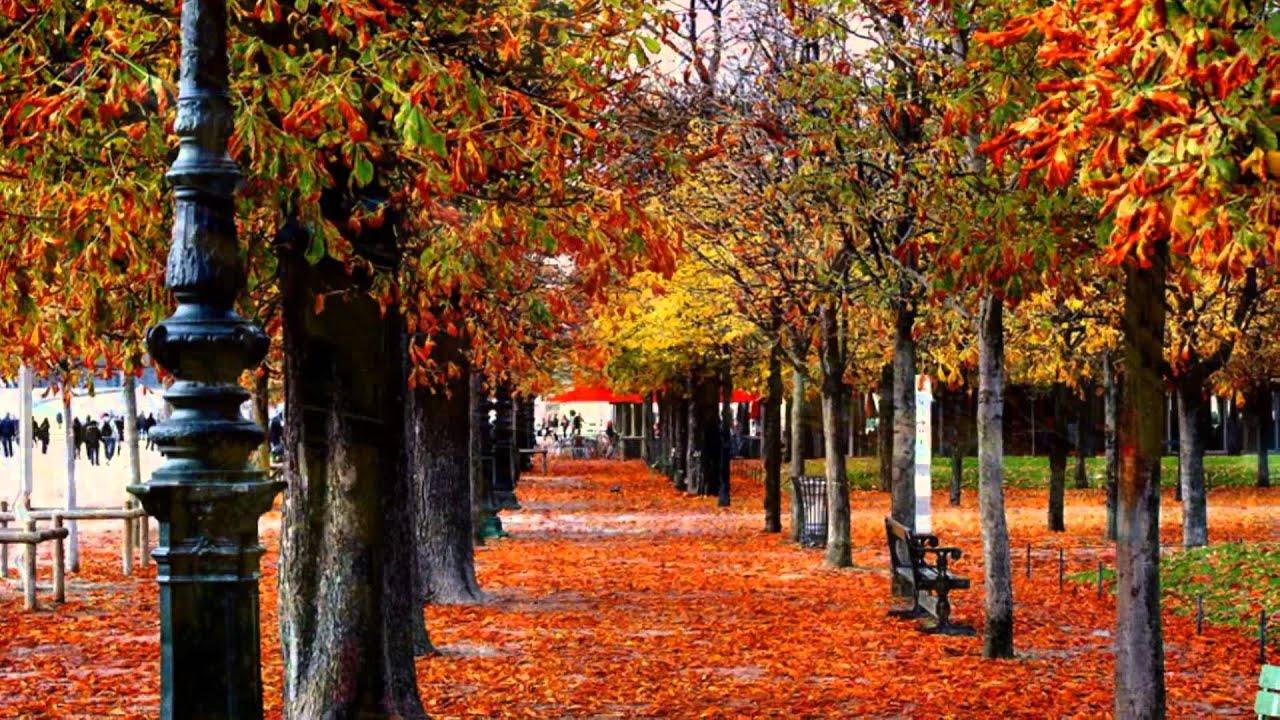 Осень в Париже - YouTube