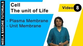 Cell - The unit of Life - Plasma Membrane - Unit Membrane