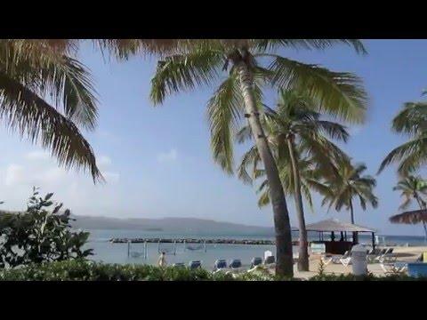 St Lucia, Windjammer