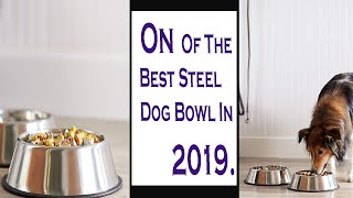 AmazonBasics Stainless Steel Dog Bowl || On Of The Best Steel Dog Bowl In Amazon 2019