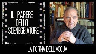 LA FORMA DELL'ACQUA - videorecensione di Roberto Leoni [Eng sub]